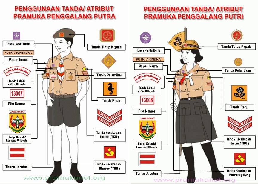 Gambar contoh penggunaan tanda pengenal pada seragam Pramuka